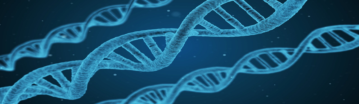 DONE YOUR DNA? WHAT IS NEXT?